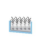 uap_iconos_componentes_fitodepuracion